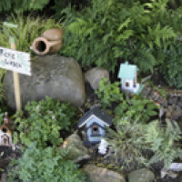 North Faery Garden 5