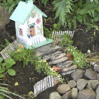 North Faery Garden 6