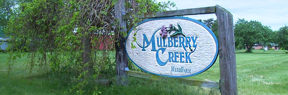 Mulberry Creek Herb Farm Sign